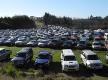 Parking at Fieldays is currently limited. Photo: Geoff Ridder
